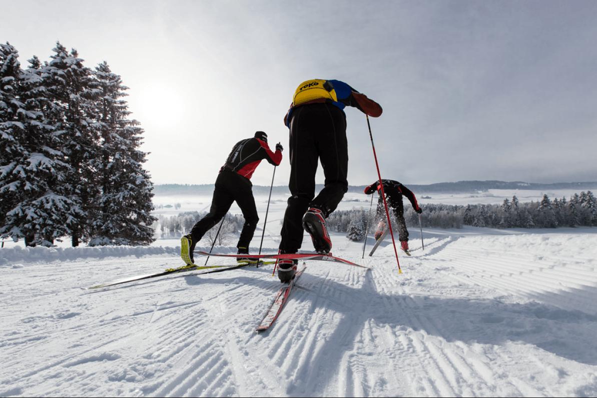 Ski de fond entre France et Suisse