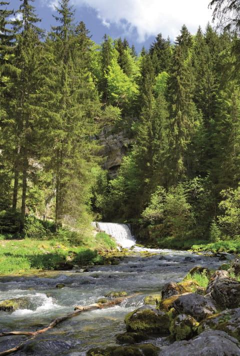 Les sources du Doubs